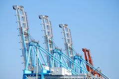 Large Cranes Stock Photo