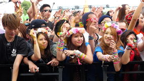 Large Crowd at Electronic Music Festival - Tokyo Japan stock video footage