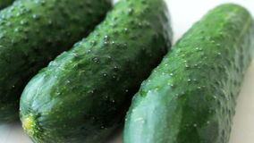 Large cucumbers stock video