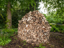 Large cut wood pile in a dome shape Stock Images