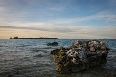 Large dead corals appear because of low tide with a colorful morning sky royalty free stock photos