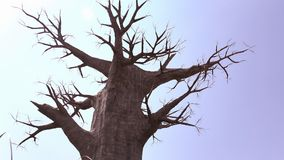 A large dead tree. On blue sky background Stock Photos