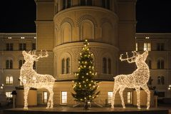Large deer sculptures made of led lights, decorated Christmas tree and the shining moon Royalty Free Stock Photos