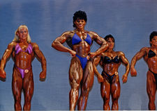 Large, Defined Women Bodybuilders Royalty Free Stock Photography