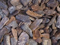 Large detailed bark pieces background photograph. stock photography