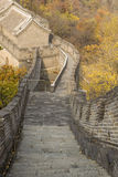 Large Downward staircase to Building Royalty Free Stock Photography