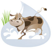 A large drop of  milk and cow Royalty Free Stock Photo
