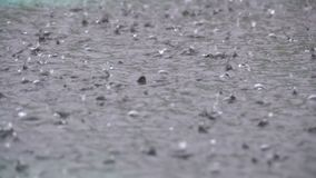 Large Drops of Rain Fall in a Puddle During a Rainstorm. Water Drops in Slow Motion.