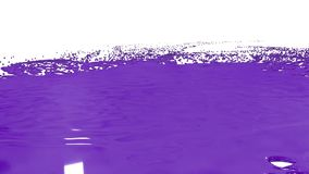 Large drops of violet paint fall on the white surface and it is stain, leaving large blots and making large splashes and. Blots. Photographed in slow motion stock video footage