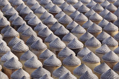 Large drying yard of brewing soy sauce Royalty Free Stock Photos