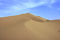 Large dune Sahara, Merzouga, Morocco Royalty Free Stock Photography