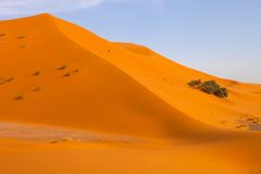 Large dunes in the Sahara deformed by the wind, Morocco Royalty Free Stock Photos