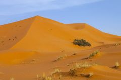 Large dunes in the Sahara deformed by the wind, Morocco Royalty Free Stock Images