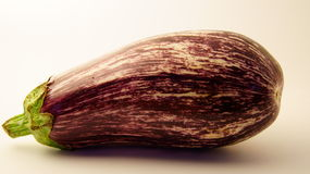 Large eggplant Royalty Free Stock Images