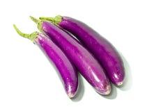 Large eggplant Stock Photography