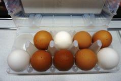Large eggs stock photos