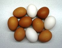 Large eggs royalty free stock photo