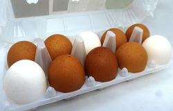 Large eggs stock photography