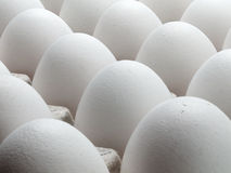 Large eggs of a hen. Royalty Free Stock Photo
