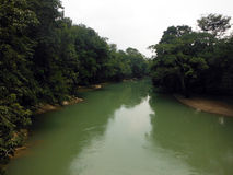 Large Emerald Cahabon River Through Forest dans Semuc Champey Photos libres de droits