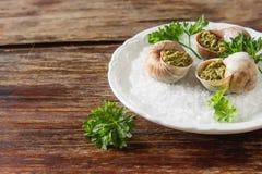 Large Escargots de Bourgogne - Snails baked  garlic butter, with Stock Images