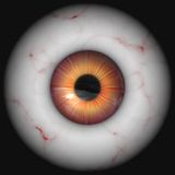 Large eyeball Royalty Free Stock Photos