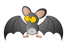 Large eyed bat Royalty Free Stock Images