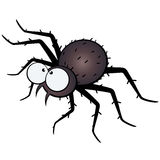 Large eyed spider illustration Royalty Free Stock Image