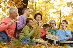 Large family picnic Royalty Free Stock Image