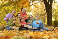 Large family picnic Royalty Free Stock Photos
