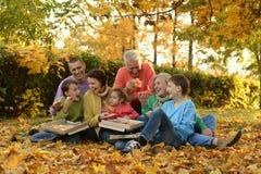 Large family picnic Stock Photo