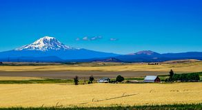 Unbelievable view. A large farm with an unbelievable view of Mount Adams in Washington state Stock Photos