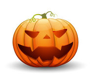 A large festive pumpkin. Vector illustration. In cartoon style Stock Photography