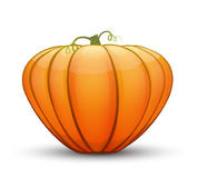 A large festive pumpkin. Vector illustration in cartoon style Royalty Free Stock Photo