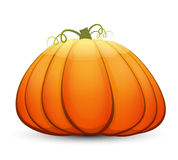 A large festive pumpkin. Vector illustration in cartoon style Royalty Free Stock Photography