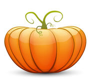 A large festive pumpkin. Vector illustration in cartoon style Stock Photography