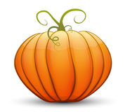 A large festive pumpkin. Vector illustration in cartoon style Royalty Free Stock Images