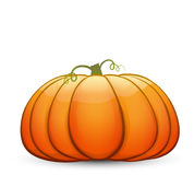 A large festive pumpkin. Vector illustration in cartoon style Royalty Free Stock Image