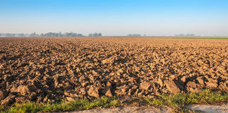 Recently prepared farmland in golden morning sunlight Stock Photo