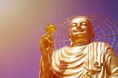 A large figure of a seated golden buddha. A large, majestic and beautiful figure of a seated golden buddha Stock Photo