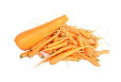 Large and fine carrots Royalty Free Stock Photo