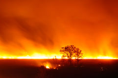 A large fire in a field Stock Images