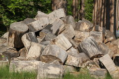 Large firewood logs. Pile of oak logs for firewood. Wood is dried and ready for splitting Royalty Free Stock Images