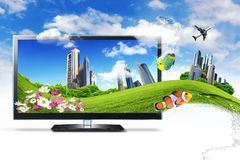 Large Flat Screen With Nature Images Stock Photos