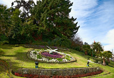 Large flower clock in Vina del Mar, Chile Stock Image