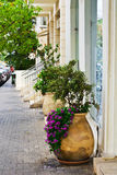 Large Flower Pots Royalty Free Stock Photo