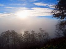 A heavy fog bank is framed by clear blue sky and some clouds above and dark tree branches in the foregound. A large fog bank is centered in this photograph with royalty free stock photo