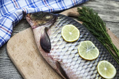 A large fresh carp live fish lying on a wooden board with a knife and slices of lemon and with salt dill. Royalty Free Stock Photography