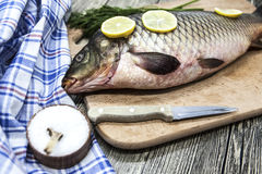 A large fresh carp live fish lying on a wooden board with a knife and slices of lemon and with salt dill. Royalty Free Stock Photos