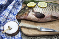 A large fresh carp live fish lying on a wooden board with a knife and slices of lemon and with salt dill. Stock Photography